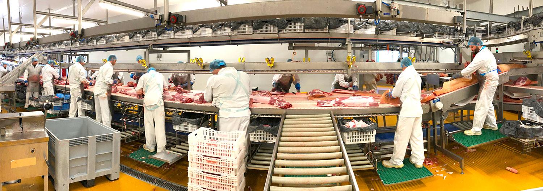 Découvrez l'atelier de découpe de Roussaly grossiste viande de porc dans le Tarn