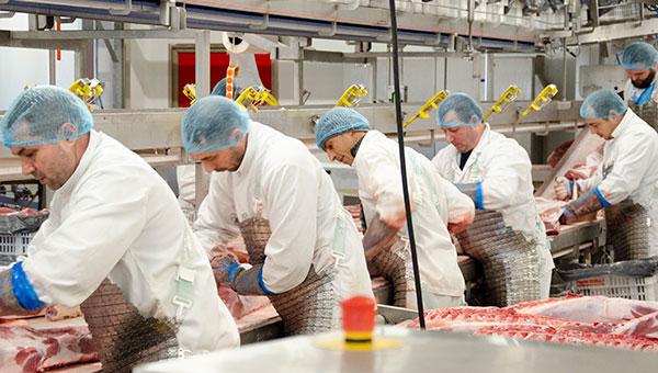 Roussaly grossiste viande de porc intègre un atelier de découpe aux dernières normes.
